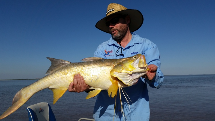 Greg's first big catch of the day 102 cm threadfin salmon.