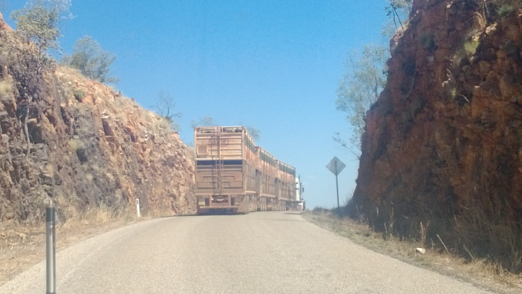 road train on a jump up